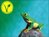 V Label Frog1m