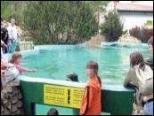 Zoo Vrt Palic M