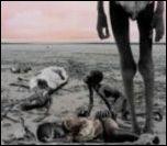 Famine M