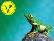 v_label_frog1m.jpg