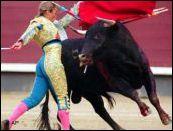 Korida zabranjena u Kataloniji!