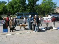 antilovni_protest_40
